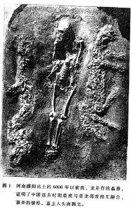 Um corpo achado entre tigre e dragão modelado por conchas de 6000 anos atrás. Fonte: Cao (1998:10)